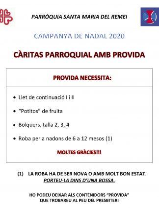 Web_Campanya Assís i Provida 2020_Página_1